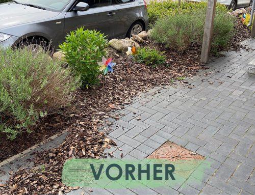 Vorher / Nachher in Hamburg-Nord